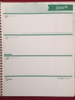 Weekly Planner by Erin Condren