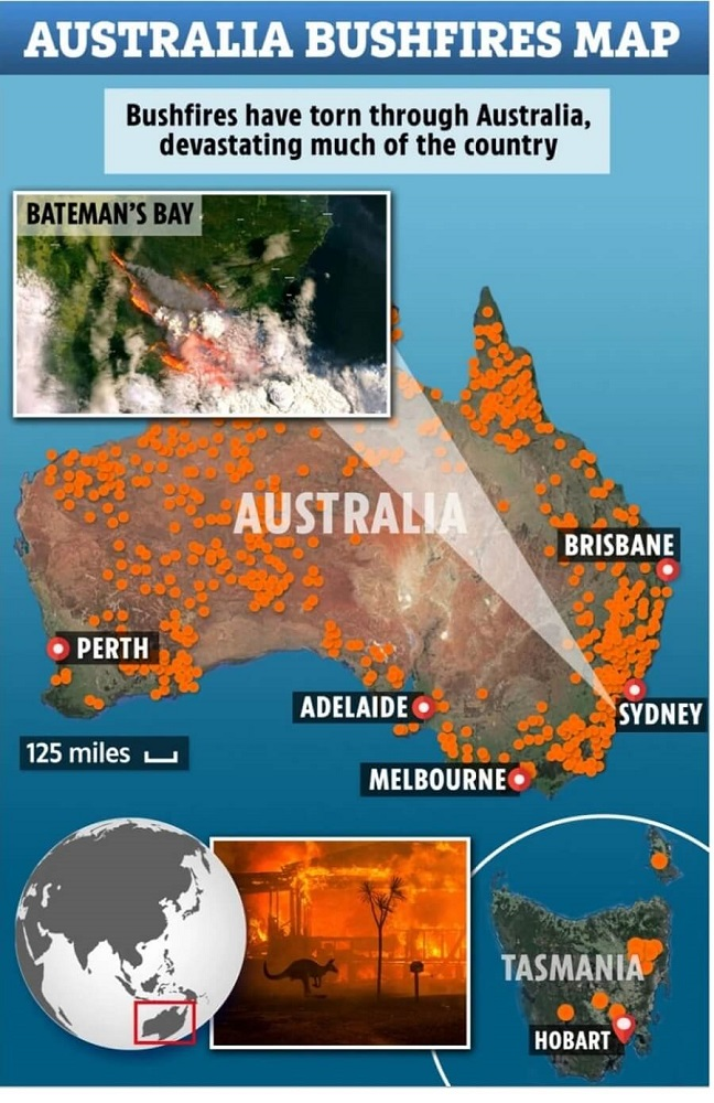 Environmental Impact of Australia's Fires