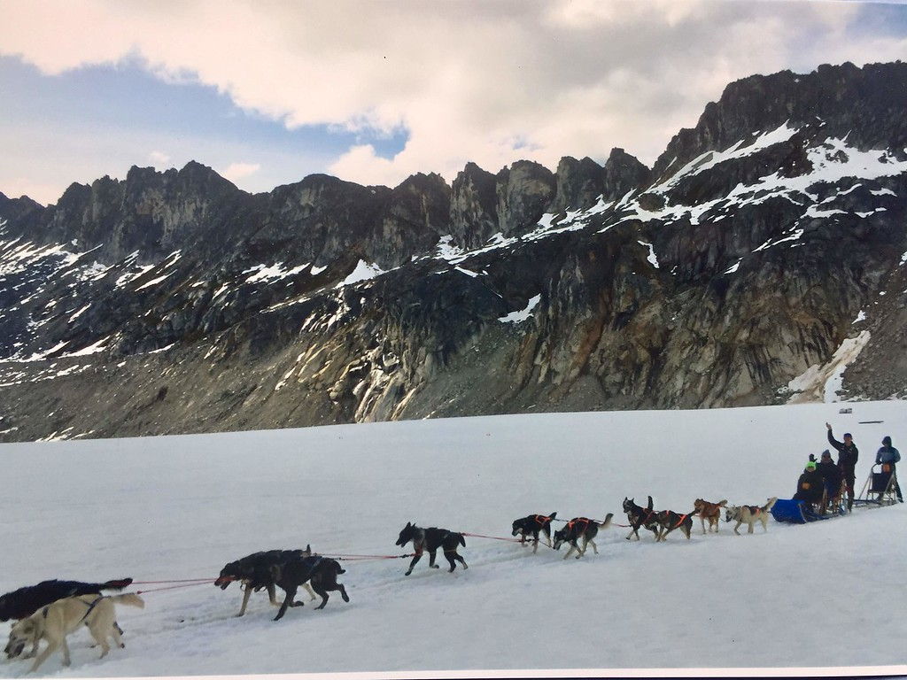 Dog sledding Alaska excursions