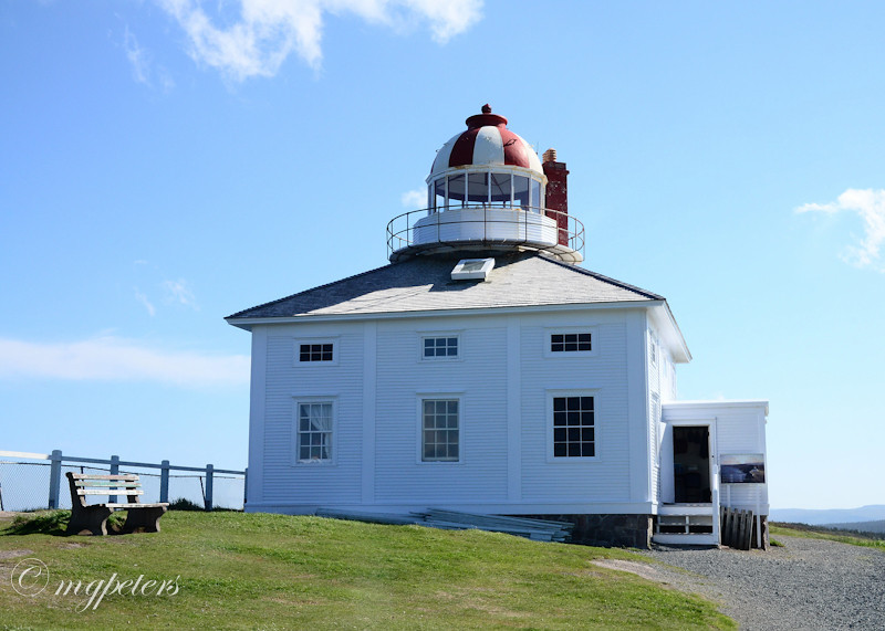 Whales-Cape Spear-25