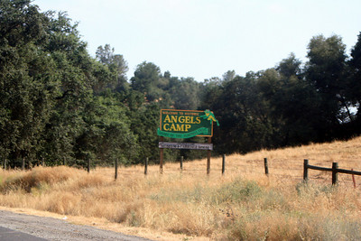 7/8/07 Heading north on Hwy 49 (Mother Lode Hwy), enroute to Angels Camp/Hwy 4 (Ebbett's Pass Rd). Central Sierra Foothills, Calaveras County, CA