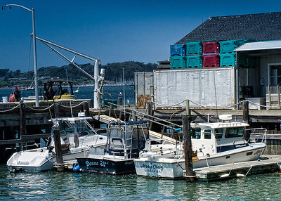 Fishing boats in the harbor along side of Lucas Wharf.