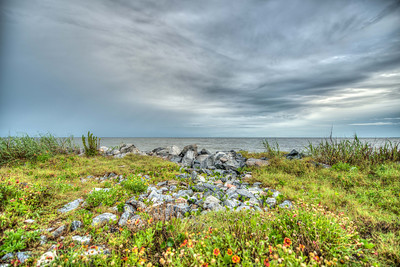 Edge of Land, Sea Island, GA