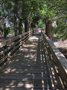 Boardwalk on Cumberland Island