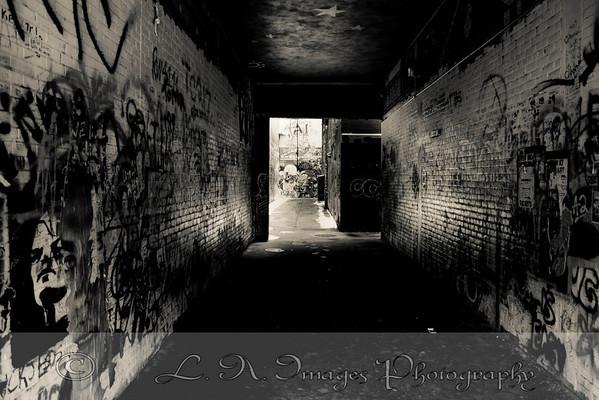 Graffiti Alley Ann Arbor Michigan
