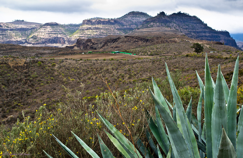 Mountain landscape<br /> Puerto Rico backlands