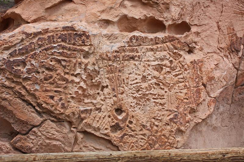 Petroglyph site, highway 50