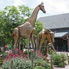 Denver Zoo - sculptures