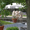 Denver Botanical Garden - Henry Moore Sculpture