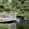 Denver Botanical Garden - Japanese garden and heron