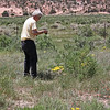 Northern Arizona - Jim photographing Mariposa lilies