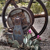 Cactus and Gears
