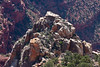 North rim of the Grand Canyon.<br /> <br /> Photo by Deb