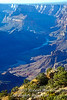 Colorado River from Desert View, Grand Canyon National Park, Arizona, United States, North America