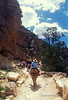 NoMR, Tourists on Mules, South Kaibab Trail, Grand Canyon National Park, Arizona, USA, North America
