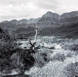 A desolate but beautiful landscape.