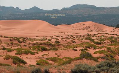 Coral Pink Sand Dunes State Park near Kanab, Utah