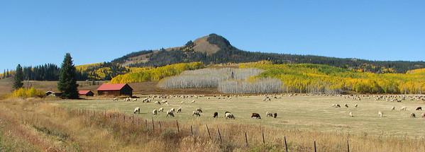 Miuddy Pass on Colorado SH 14. September 28, 2011