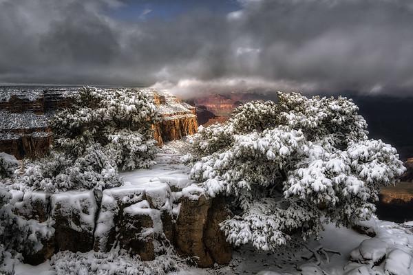 Yaki Point Winter