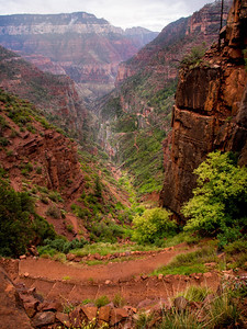 North Kaibab, note the small bridge and the trail leading off to the south.