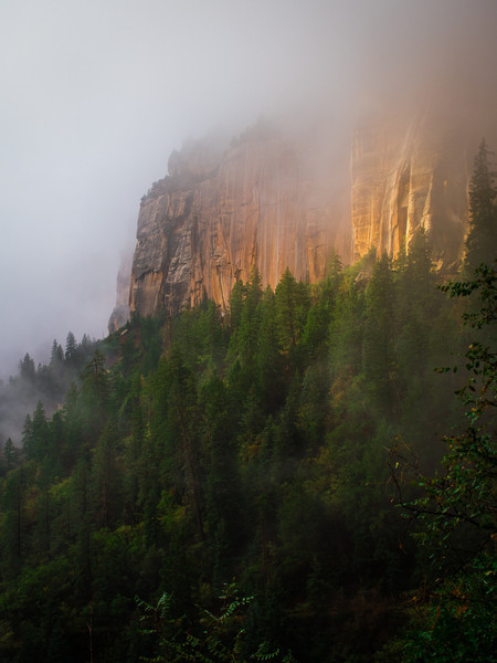 As the fog started to lift, some beautiful light came shining through.