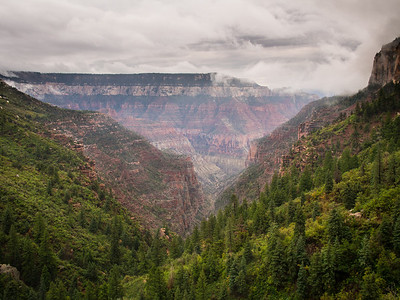 Just below the rim on the North Kaibab trail, leading down into the Bright Angel trail.