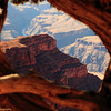 3/18 4:23pm.  A cookie cutter framing image.  Tree trunk as the foreground, cliff as the mid, and canyon as the background.