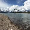 Augie, Jackson Lake, & Tetons