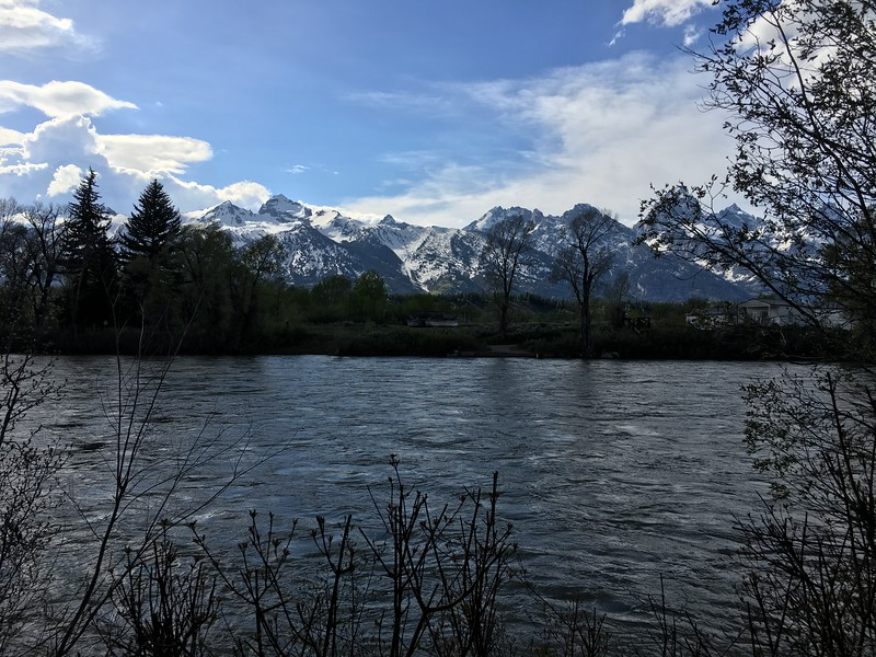 Tetons from Snake River in Moose, WY