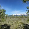 Grand Tetons - Jackson's Hole