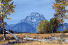Autumn, Mount Moran, Grand Teton National Park, Wyoming, USA, North America