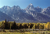 Autumn, Grand Tetons, Grand Teton National Park, Wyoming, USA, North America