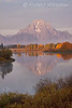 Autumn, Early Morning, Oxbow Bend, Snake River, Mount Moran, Double-crested Cormorant, Grand Teton National Park, Wyoming, USA, North America