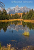 Grand Teton Mountains Reflected in a Beaver Pond, Grand Teton National Park, Wyoming, USA, North America