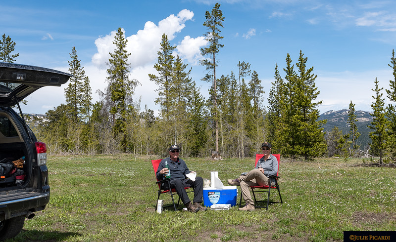After battling the bear jam all morning, we found a quiet spot for a picnic in Turpin Meadows at Togwatee Pass, WY. May 2018