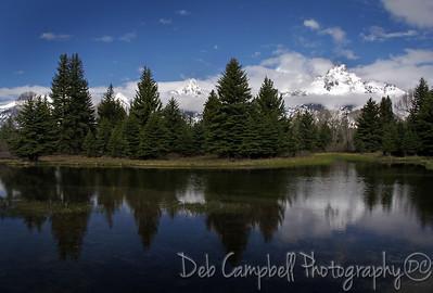 Schwabacher's Landing Grand Teton National Park