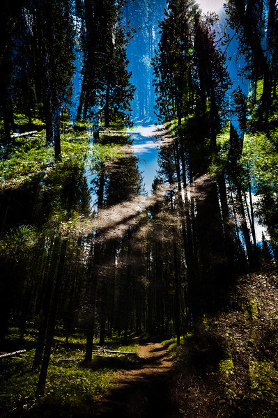 M.C. Escher Landscape No 1.  Just a double exposure...  Interesting where the two blended together...  Lots to look at.