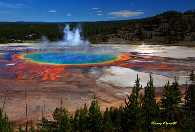The Grand Prismatic as seen from the trail above, it's really worth the short walk to see this from a higher elevation.