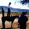 Cowboys at Bar Ten Ranch