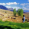 Bar Ten Ranch