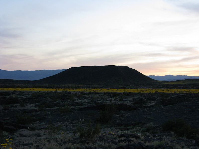 Amboy Crater with its cloak  of Desert Gold.