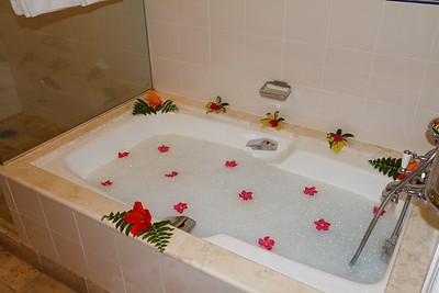 Our Butler Drew a Bath