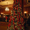 Christmas tree in the lobby of the Omni Parker House