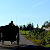 Horsedrawn Carriage Ride