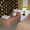 Twin beds in the Meadow Room