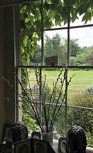 Window Looking Out to the Garden