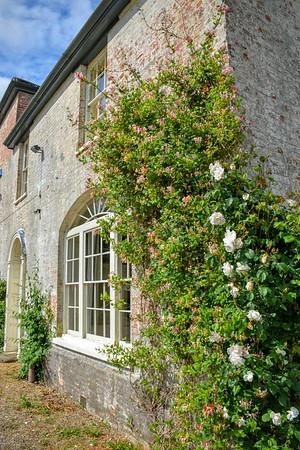 Climbing Roses at Washingford House