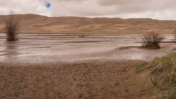Lots of Folks (and Pets) Made Their Way Across and to the Dunes