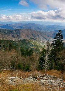 View from Clingman's Dome