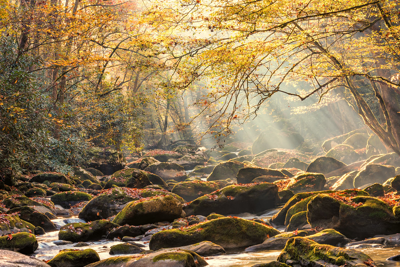 Early Morning Sunrays, Middle Prong Little River